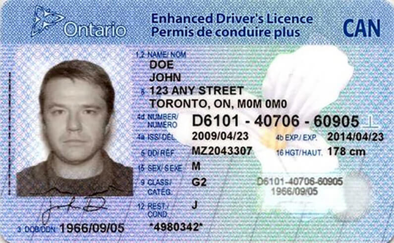 Buy fake ID cards of Canada online Canadian fake ID card for sale online