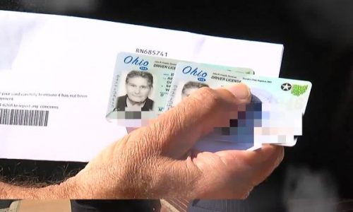 buy driving lisense buy drivers license for sale